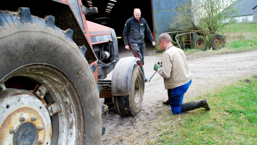 The use of labour differs between the various production systems. Dyrvig Organic Farm, Denmark. Photo: Gustav Bech